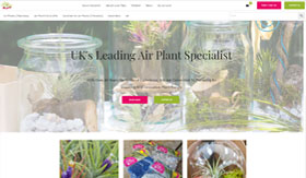 Love Tillys - Air Plants Specialist